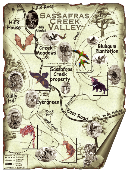 Sassafras Creek Valley map
